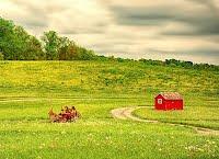 https://sites.google.com/a/dcvnps.org/vnps-dev/gallery/member-s-gallery/Klien%20Rural-Farm---Clarity.jpg